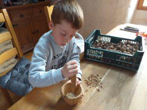 Pour un gâteau aux noix réussi, Yanis écrase les noix.